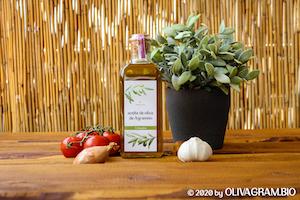 olivagram Arbequina