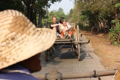 reisen mit sinn vietnam ochsenkarren
